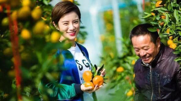 """丹江大观苑:快来摘""""喝""""矿泉水长大的橘子石榴啦!"""