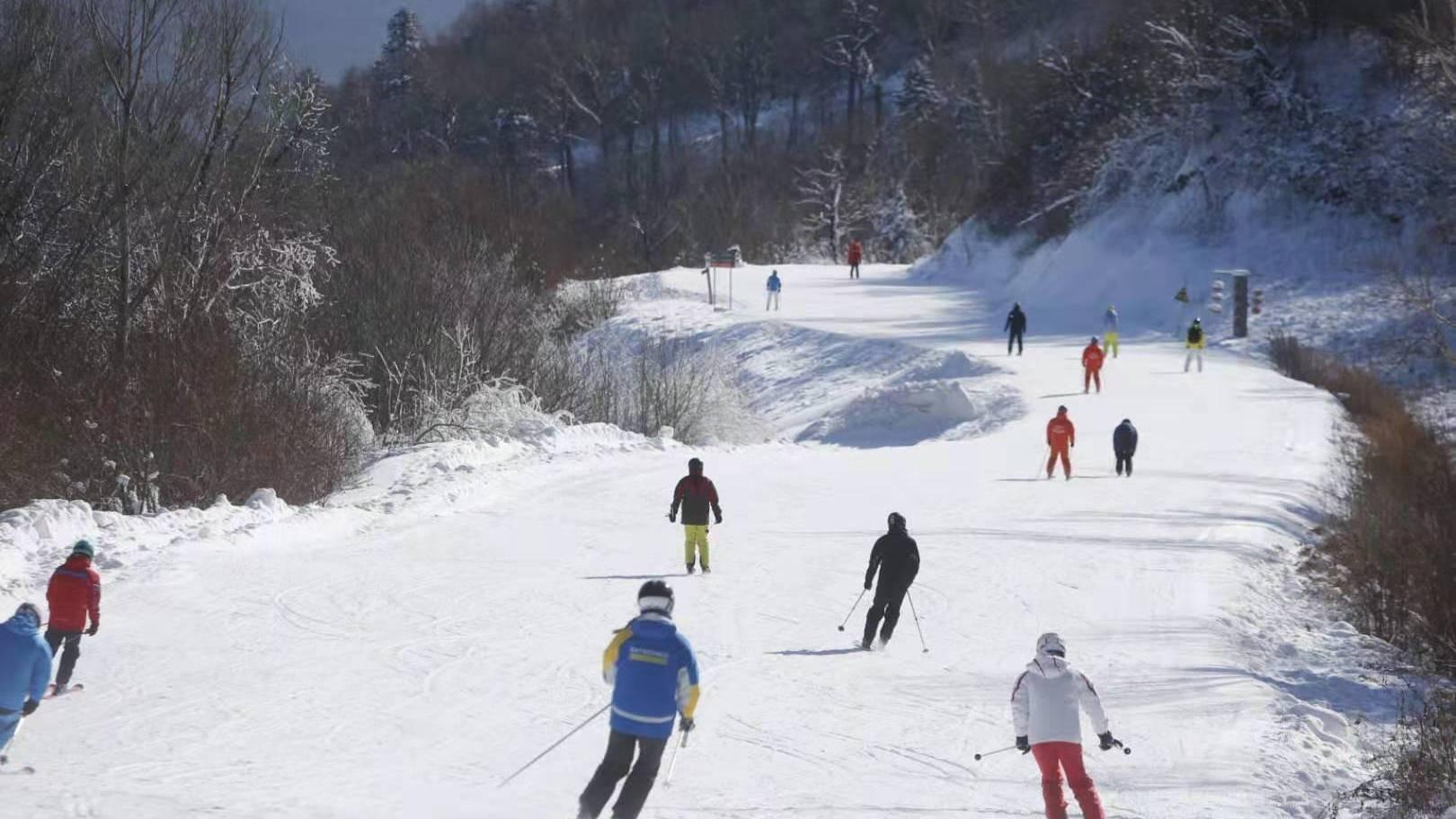 亚布力阳光开板首滑,今冬亚布力滑雪开启更加贴心服务