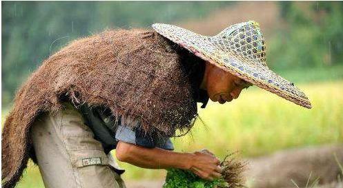 用稻草编织小动物图解