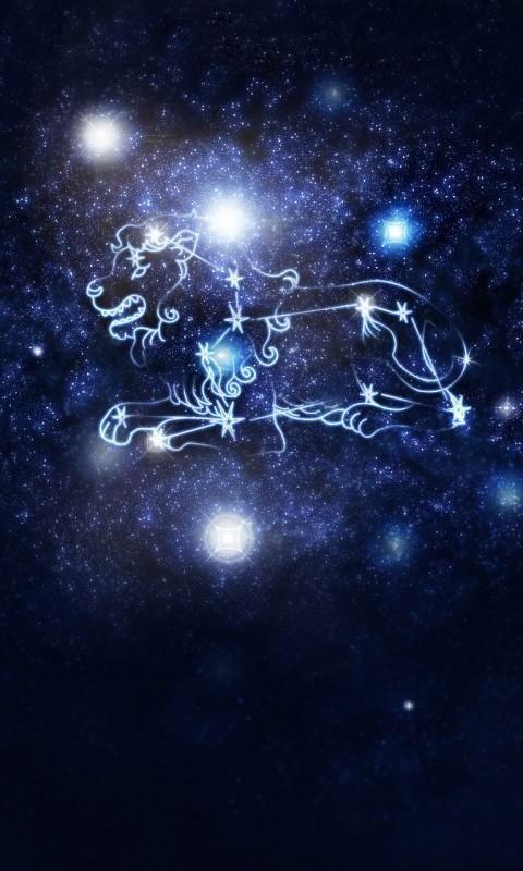 十二星座喜欢性格,快来看看真实的你双鱼座隐藏的花是什么图片