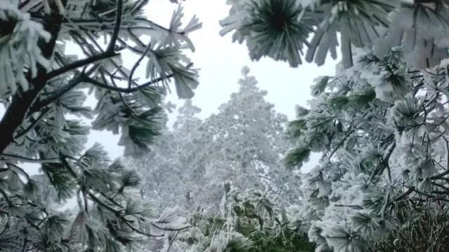 超美超赞!德化九酒店景区迎来仙山北京-雾松时成都首场vi设计公司图片