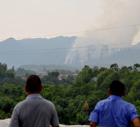 重庆金凤镇发生山火 半山腰处浓烟滚滚