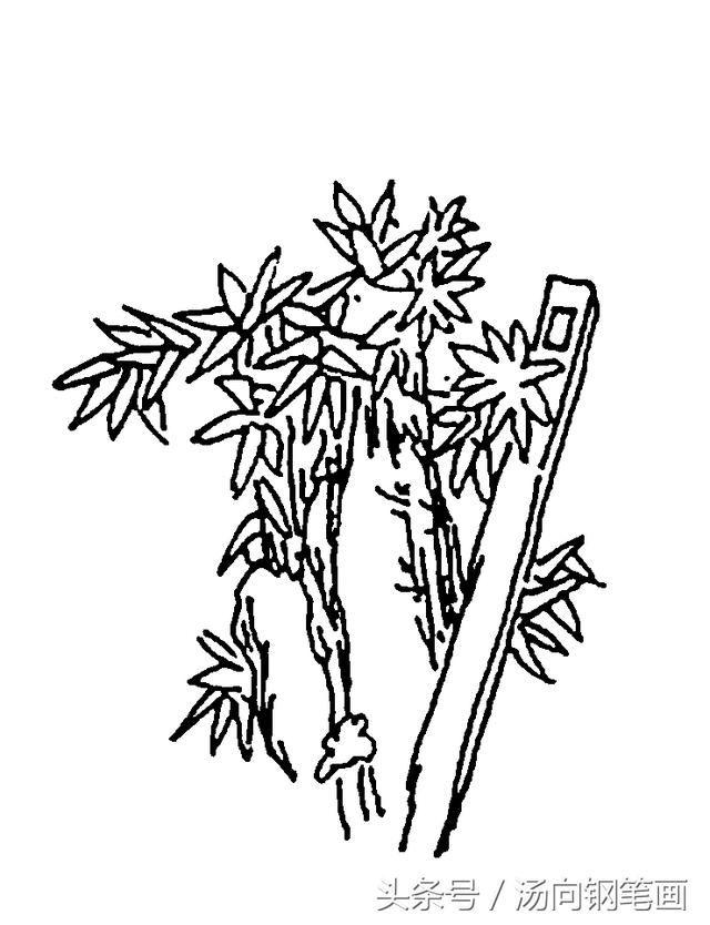简笔画 设计 矢量 矢量图 手绘 素材 线稿 640_834 竖版 竖屏