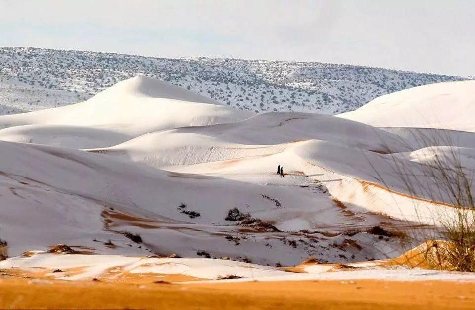 连撒哈拉沙漠都下雪了,北京你的初雪在哪儿呢?