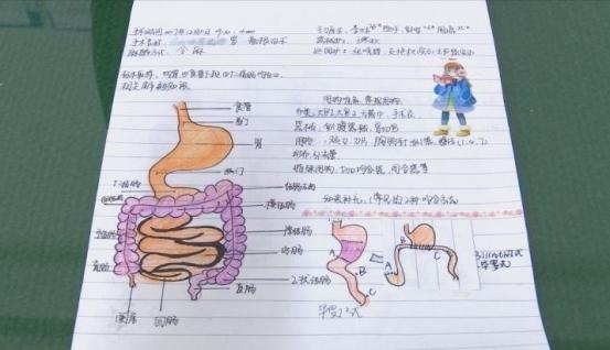 """徐州90后""""美小护"""" 手绘解剖图笔记走红"""