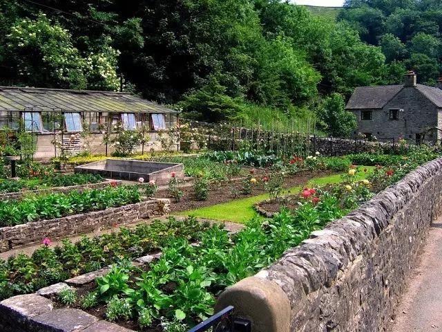 农村后院设计实景图