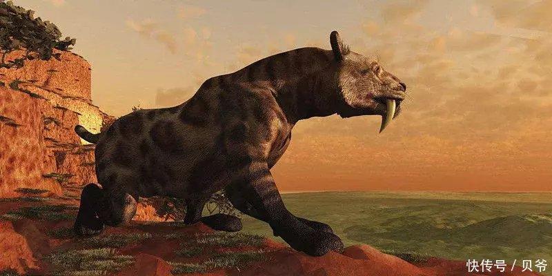 """科学家最想""""复活""""的10种灭绝动物 真的可能实现"""