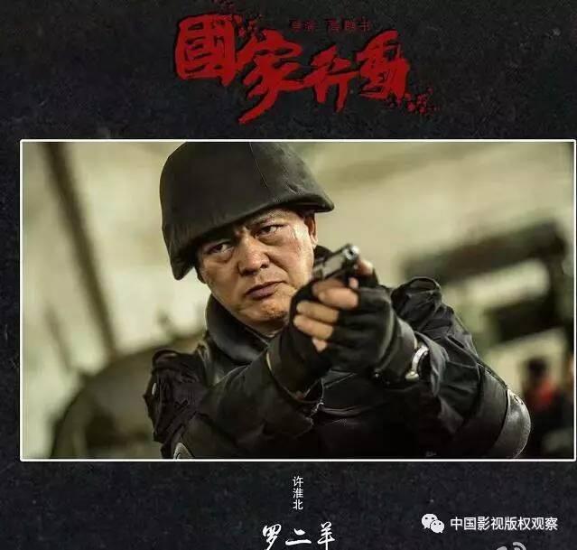 贺延龄_由公安部副局级调研员贺延龄担任组长,带领许淮北,徐望东等警队精英