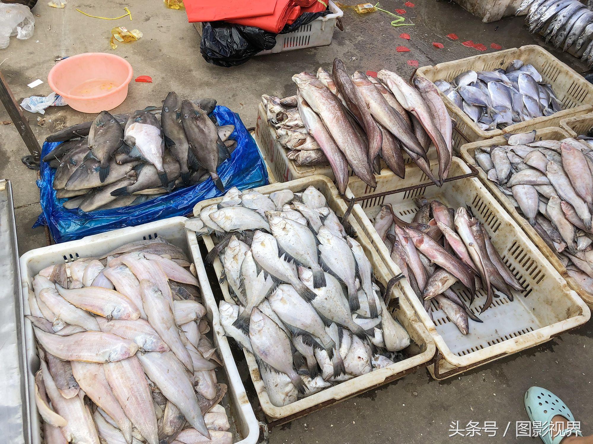 期货源海鲜家常也营养厉虾一斤25元市场鱼一不断及食谱大全做法老板图片
