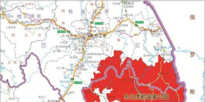 东北虎豹国家公园规划征求意见:疏通虎豹迁移廊道图片