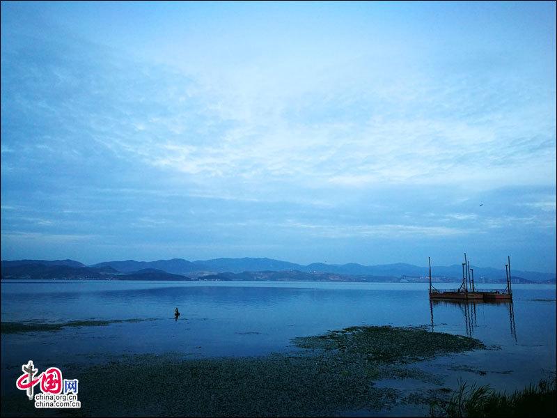 风景图片大全洱海花草