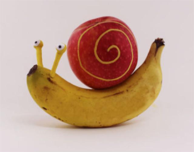 当水果邂逅创意,看各色萌萌哒小动物闪亮登场