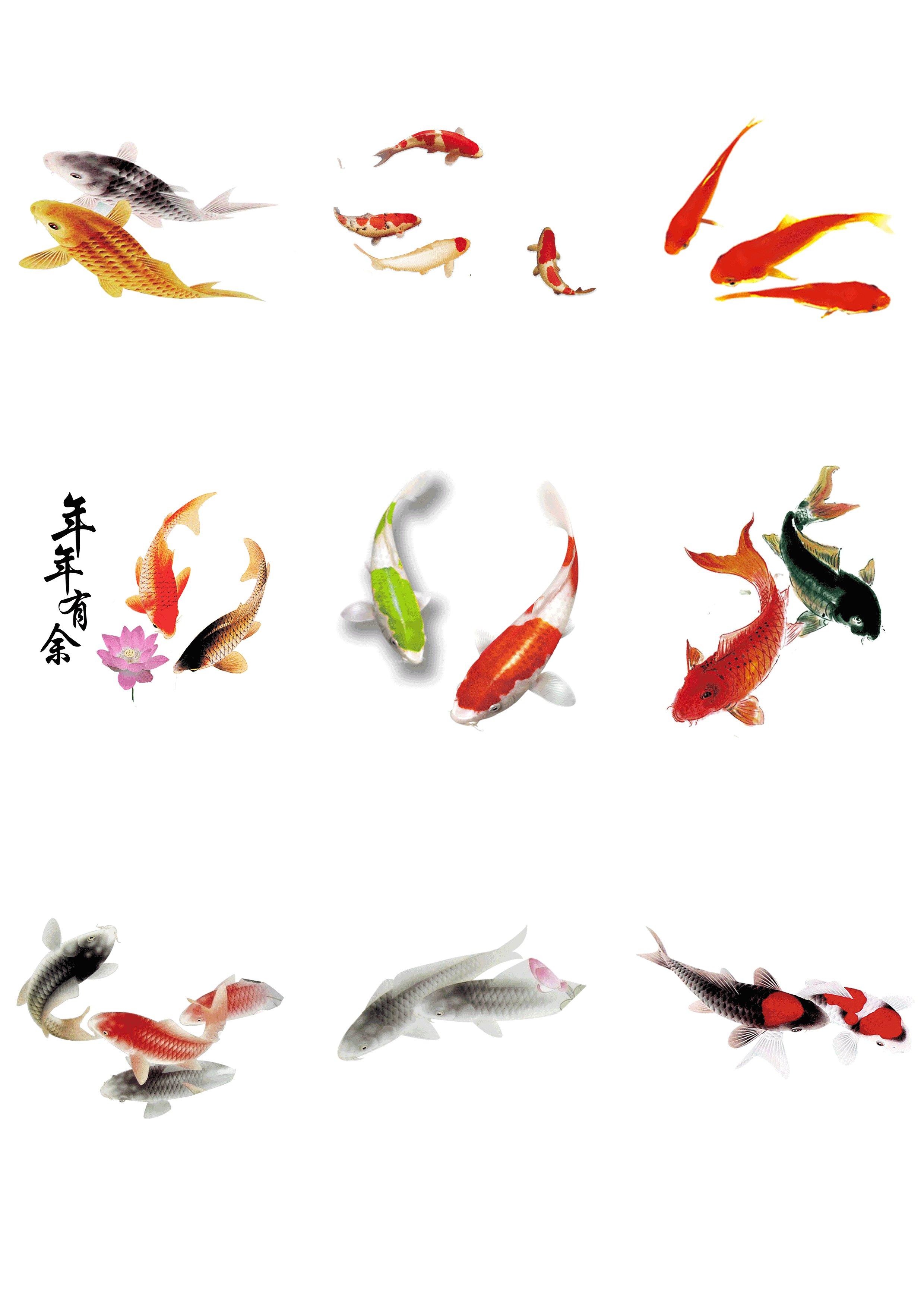 国画鱼的画法步骤简单