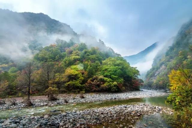 黑河国家森林公园位于黑河源头周至县境内,是世界自然基金会生态旅游
