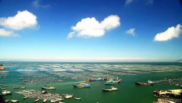 海上花园城市 蓝天,碧海,绿岛,金沙,白浪 是舟山生态旅游环境的主