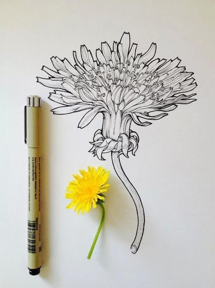 简单易学针管笔手绘,寥寥几步,学渣也可以秒变大神