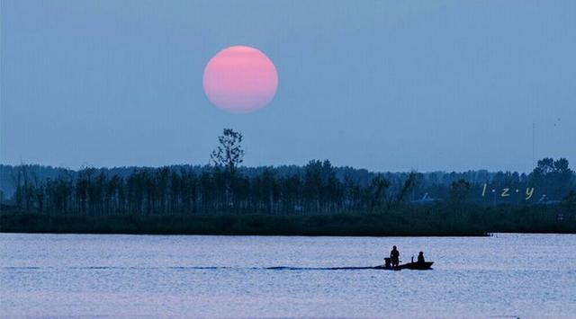 大美泗阳成子湖,那是我的家乡