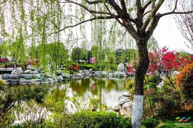 春满中国 醉西安|春游好去处:在临潼度假区芷阳广场听见花开的声音!