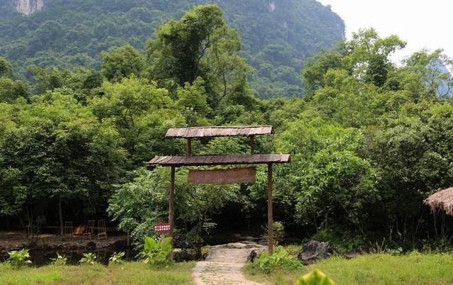 广西罗城水上相思林旅游景点