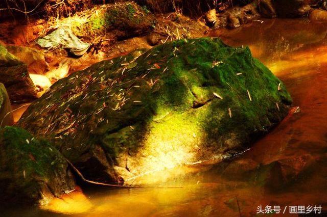 赤水燕子崖不错值得一游的景点