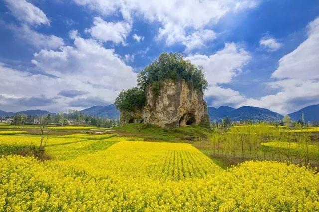 选择一处这里的小村,还你一个闲云野鹤初中生云南大学哪个招图片
