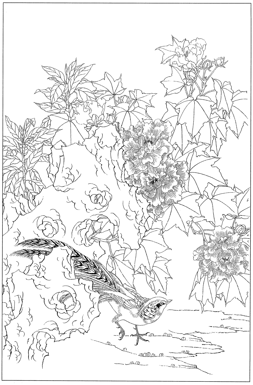 芙蓉花鸟高清工笔花卉白描线稿丨手绘素材上色练习图片