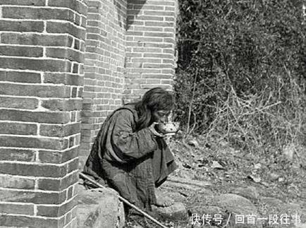心理学:4个乞丐,哪个乞丐最可怜?测你的智商相似于哪种动物
