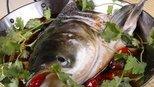 鱼身上最脏的器官 有大量寄生虫 可惜很多天津人都不清楚