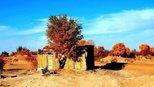 中国沙漠深处有个孤村,被发现时连当今什么朝代都不懂,与世隔绝