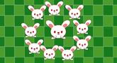第10集 小白兔