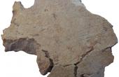 2017十大考古发现:106年前超级水果蛋糕长这样