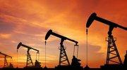 油价彻底失控!全球最大产油国经济崩溃!沙特、俄罗斯大赚一笔?