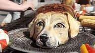 男子在大街烤狗肉,爱狗人士看见了准备上前斥责,一看说不出话来