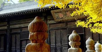 """大觉寺:北京""""三大寺庙花卉""""之玉兰花"""