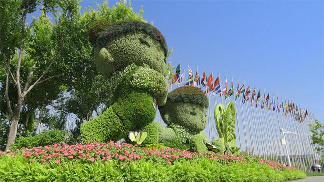 大型生态文明纪录片《绿水青山》第六集:美丽世界