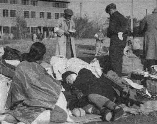 日本战败前夕,这里的老鼠长成几十斤,人却吃不饱!