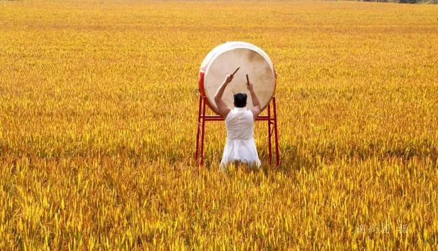 最新农村创业致富项目,十大暴利行业,农村创业