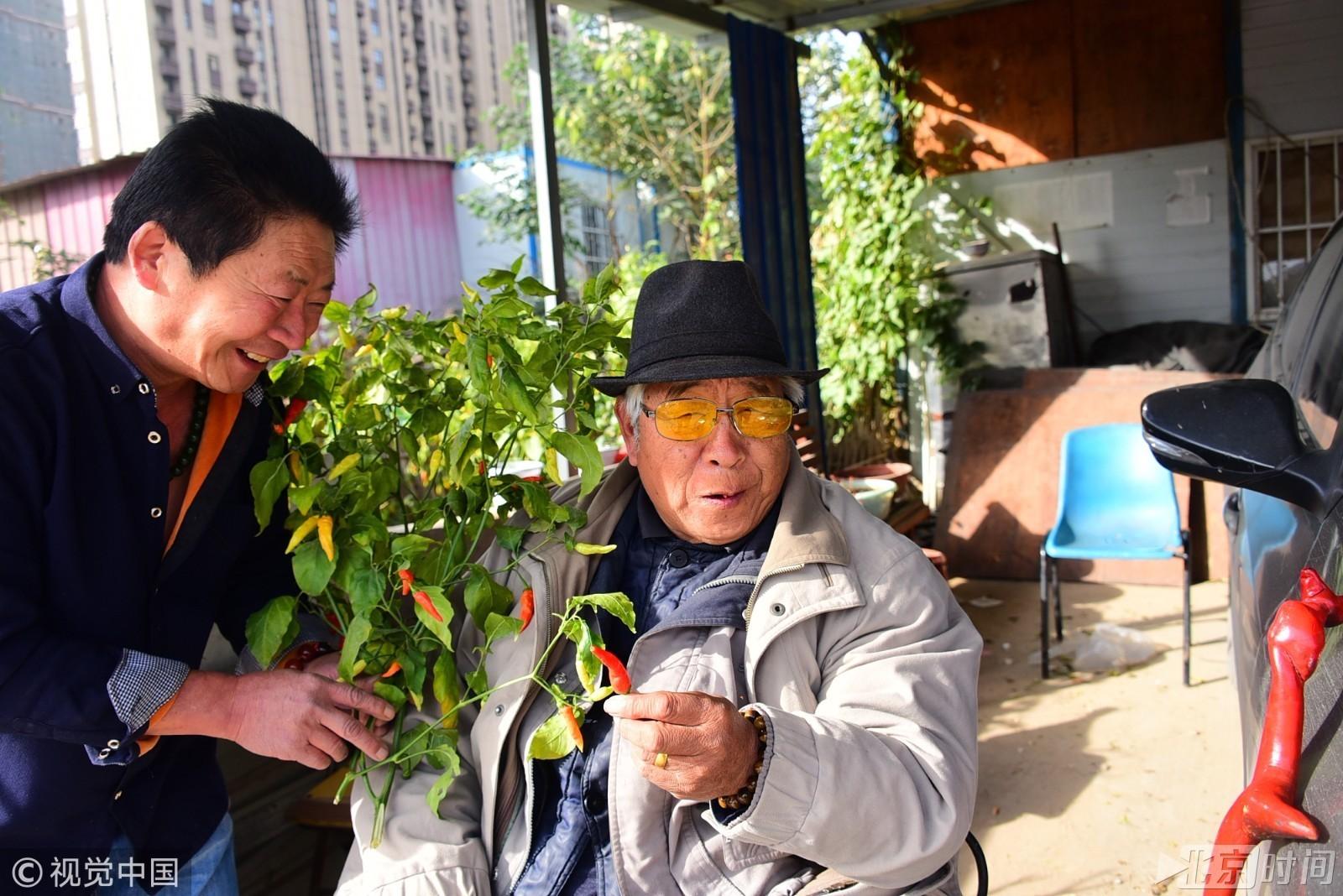 """""""中国辣王""""一天三顿饭可以没肉 不能没有辣椒 - 周公乐 - xinhua8848 的博客"""