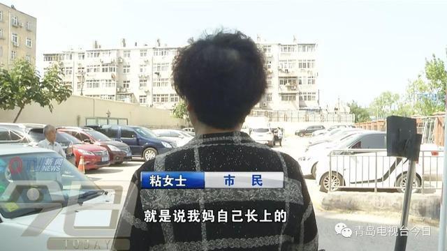 亚虎娱乐:瘫痪老人遭虐待?监控拍下可怕一幕