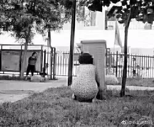 """威尼斯人娱乐场开户:孩子秋游时被""""跟踪""""_真相揭开老师抓狂家长却点赞"""