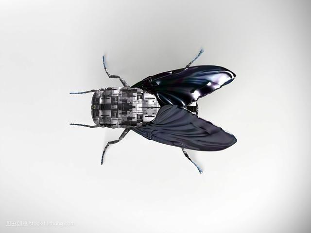 苍蝇机器人杀人于无形 不知不觉就可以轻易杀