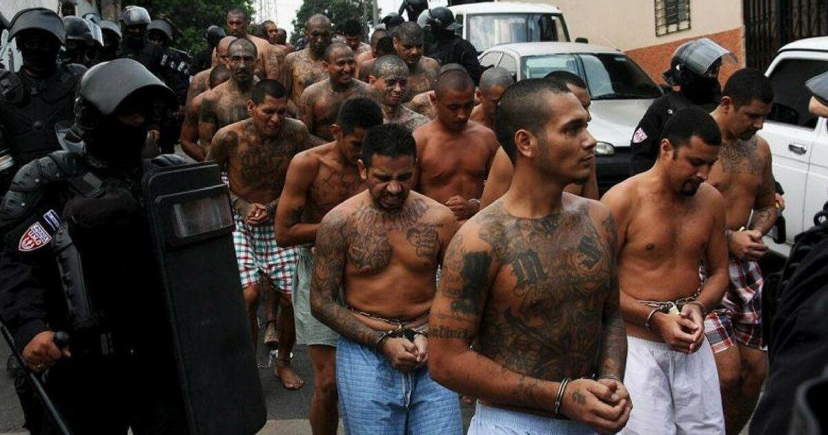 特朗普:有些非法移民特别坏 他们不是人而是畜生