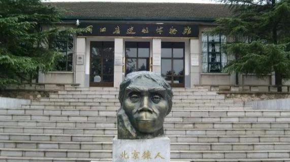《爱上博物馆》疯狂原始人5月25日17:25播出