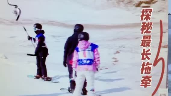"""探秘!冬奥滑雪运动员赛前必站的""""神器""""原来是它"""