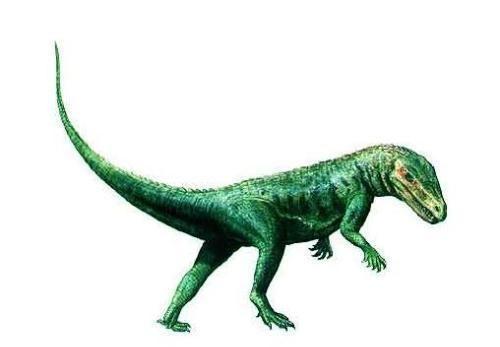 恐龙统治地球上亿年,进化出了各种各样的特色