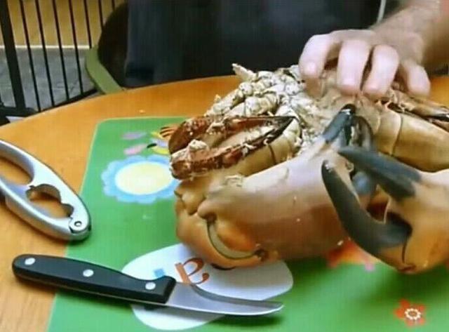 比帝王蟹还贵的面包蟹敲