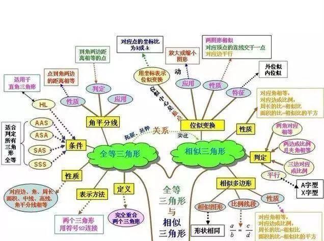 初中数学期末复习,只看这10张树形图,覆盖绝大